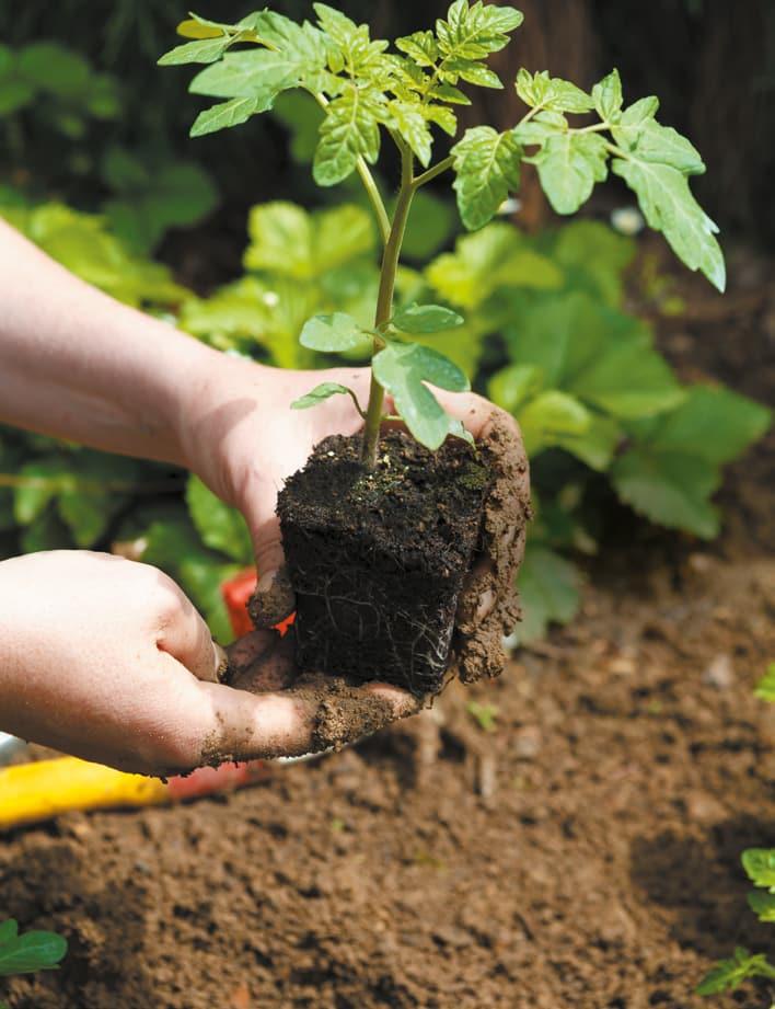 Zéro pesticide, c'est 1 000 fois mieux pour ma santé et la planète